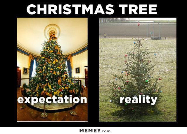 funny-christmas-trees-expectation-vs-reality
